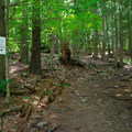 Junction for two of the trails. The yellow trail is the least steep.- Vroman's Nose