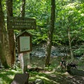 The beginning of the Hedgehog Brook Trail.- Burnt Rock Mountain via Hedgehog Brook Trail