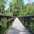 Boardwalk over a marsh.- Leesylvania State Park