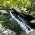 Waterfall along the Cedar Run Trail.- Whiteoak Canyon + Cedar Run Circuit