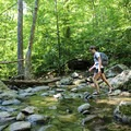One of the many stream crossings.- Whiteoak Canyon + Cedar Run Circuit