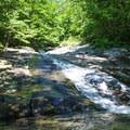 A natural slick rock waterslide on Cedar Run Trail.- Whiteoak Canyon + Cedar Run Circuit