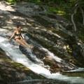 Making a splash in the deep pool below.- Whiteoak Canyon + Cedar Run Circuit