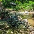 A rock bridge across the stream at the Cedar Run Link Trail.- Whiteoak Canyon + Cedar Run Circuit