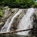 Lower Whiteoak Falls.- Whiteoak Canyon + Cedar Run Circuit