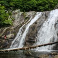 A deep pool at the base of the Lower Falls is a popular swimming destination for hikers.- Whiteoak Canyon + Cedar Run Circuit