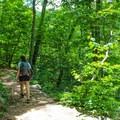 Switchbacks on Whiteoak Canyon Trail.- Whiteoak Canyon + Cedar Run Circuit