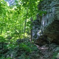 Large rock overhang alongside Whiteoak Canyon Trail.- Whiteoak Canyon + Cedar Run Circuit