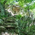 Rock steps on Whiteoak Canyon Trail.- Whiteoak Canyon + Cedar Run Circuit