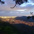 Ridge view looking into Manoa Valley.- Kolowalu Trail