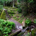 A man-made log-stacked stairway and retaining wall.- Elephants Head via Long Trail North