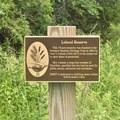 Entrance to the Leland Reserve.- Leland Reserve