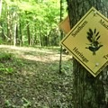 If you lose the path, follow these yellow signs.- Leland Reserve