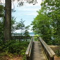 Boardwalk lookout on the Beach Trail.- Mason Neck State Park