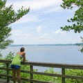 Looking out over Belmont Bay.- Mason Neck State Park