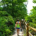 Hiking the Bayview Trail.- Mason Neck State Park