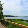Boardwalk view of the bay.- Mason Neck State Park