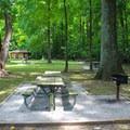 Picnic area.- Mason Neck State Park