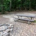 Typical campsite at Fourth Iron Campsites.- Fourth Iron Campsites
