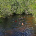 Floating the creek.- Turkey Creek Park