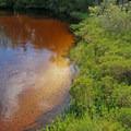 Beautiful Turkey Creek.- Turkey Creek Park
