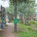 Almost any available surface is made into a signpost here.- Sign Post Forest