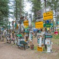 A few benches are scattered around so you can take your time to relax here.- Sign Post Forest