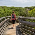 Walking over the boardwalk toward the parking lot.- First Landing State Park