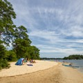 A view of the shoreline at the Narrows.- First Landing State Park