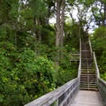 A walkway leading to the campground.- Kiptopeke State Park