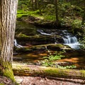 Nearby hiking at Van Campens Glen.- Worthington State Forest Campground