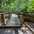 A viewing platform for the falls.- George W. Childs Park Trail
