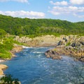 After the waterfalls, the river flows into Mather Gorge.- Great Falls Park
