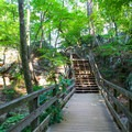 Footbridge on the Riverview Trail.- Great Falls Park