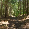 The easy trail is longer but much more level.- Cobble Hill