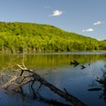 The easy trail passes Echo Pond. A private home can be seen in the distance.- Cobble Hill