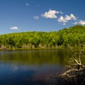 Another view of Echo Pond.- Cobble Hill