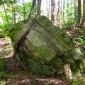 Large boulders are a common sight along Adirondack trails. Glacial erradics, as some are called, are remnants of the ice age when glaciers deposited them in unlikely spots.- Cobble Hill