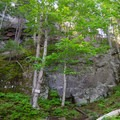 The steep trail leads up to a large rock face where the the first lookout awaits above.- Cobble Hill