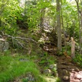 The steep trail living up to its name.- Cobble Hill