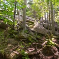 In this section, hikers must scale the open rockface at an almost vertical angle. To the right, there is a rope to help with the ascent.- Cobble Hill
