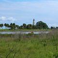 The lighthouse.- St. Marks National Wildlife Refuge