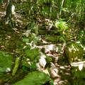 A set of stone steps to assist with the incline.- Cobble Lookout