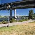 The South Waterfront Park Trail at Poet's Beach with the Marquam Bridge behind.- Poet's Beach