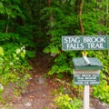 Without the trail register, the trail is easy to miss.- Stag Brook Trail