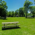 Picnic area in Cave Point County Park.- Cave Point County Park