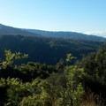 Views from the Kukui Trail.- Lonomea via the Kukui Trail