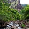 Koaie River upstream of campsite.- Lonomea via the Kukui Trail