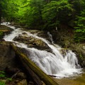This 15-foot waterfall is at the base of a long slide that holds a variety of smaller waterfalls.- Stag Brook Trail