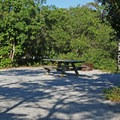 A typical site in Henderson State Park Campground.- Henderson Beach State Park Campground